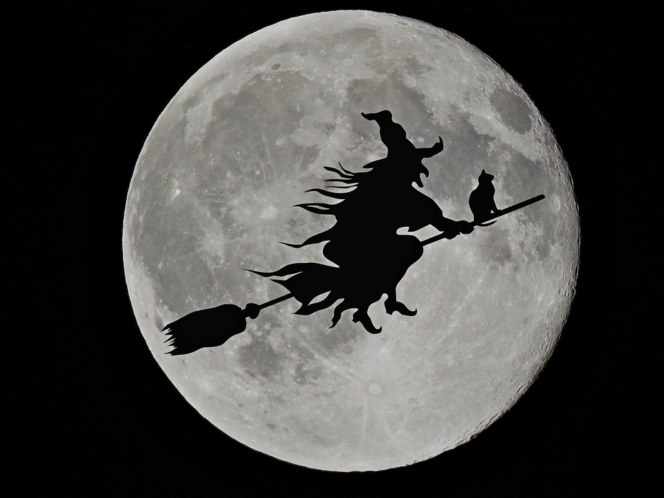 Halloween Black Cats Moon Brushes Witch